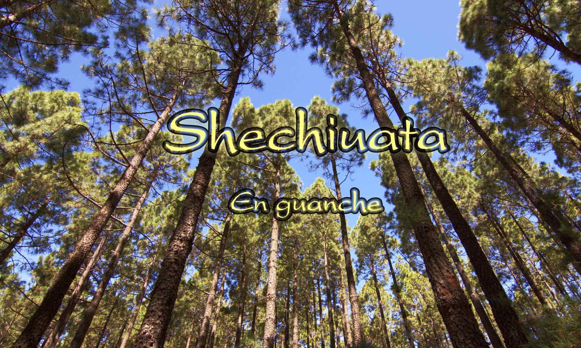 Shechiuatá-En guanche